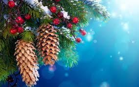 расписание на рождественские и новогодние праздники